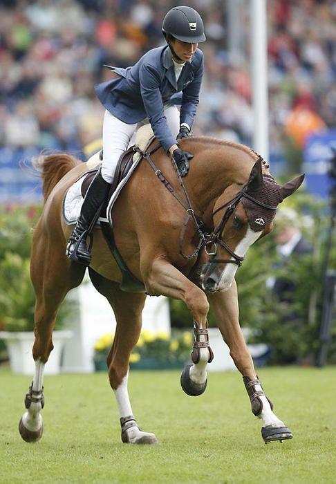 el caballo mas caro Palloubet D'Halong