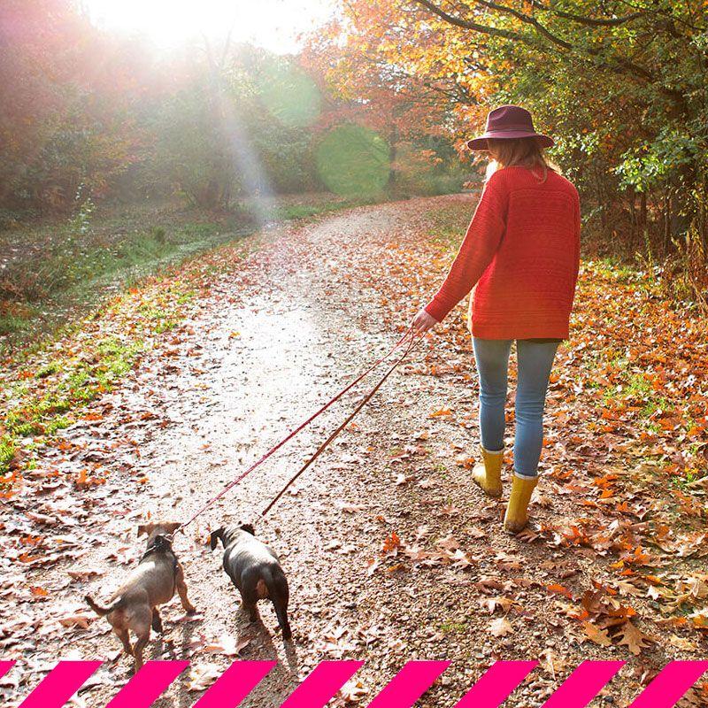 Pasar más tiempo en la naturaleza puede mejorar tu salud