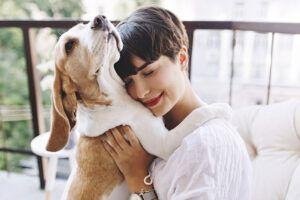 8 películas que te harán recordar por qué debes amar a tu mascota